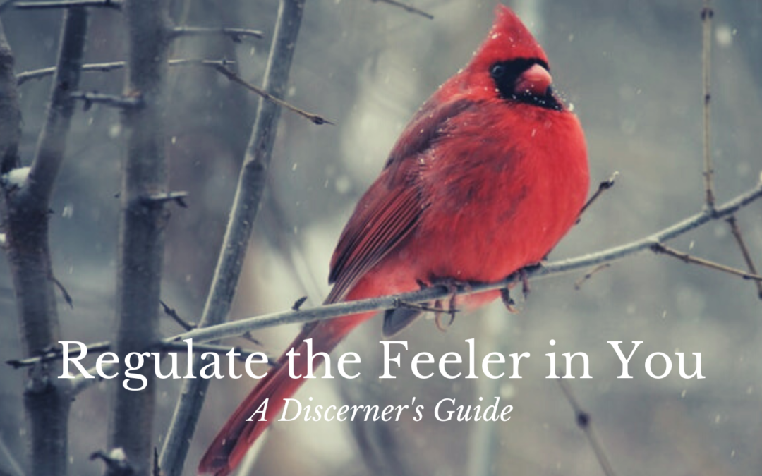 regulate the feeler in you, discerner's guide, discerning of spirits, distiguishing between spirits, gifts of the spirit, Christian