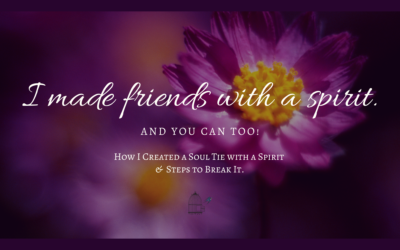 Soul Tie with a Spirit: How I Made Friends with a Spirit. And You Can Too!